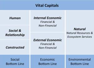 Vital Capitals Table