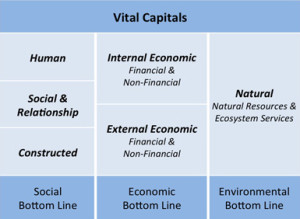 Vital Capitals Table
